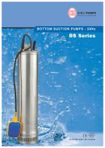 Bottom Suction Pumps