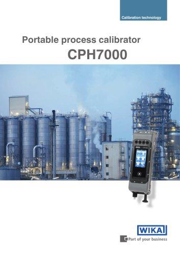 Portable process calibrator
