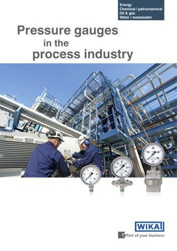 Pressure gauges in the process industry