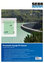 Pneutmatic Gauge PS