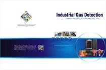 Industrial Gas detection