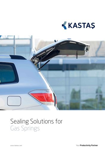 Sealing Solutions for Gas Springs