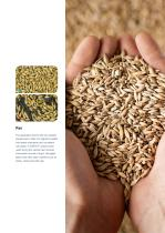 Grain Solution Brochure - 7
