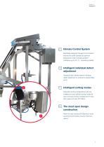 SORTEX E PolyVision for Plastic - 7