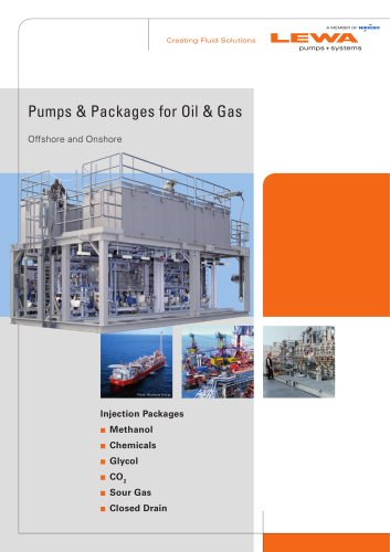 Pumps packages for Oil and Gas