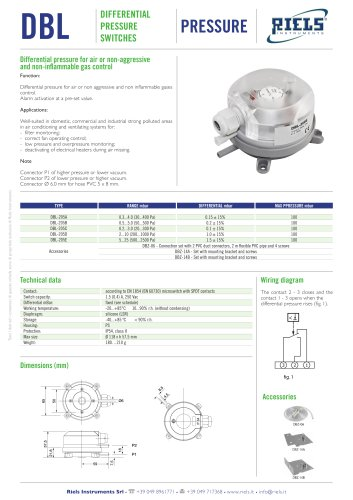 DBL Differential pressure for air Riels® Instruments