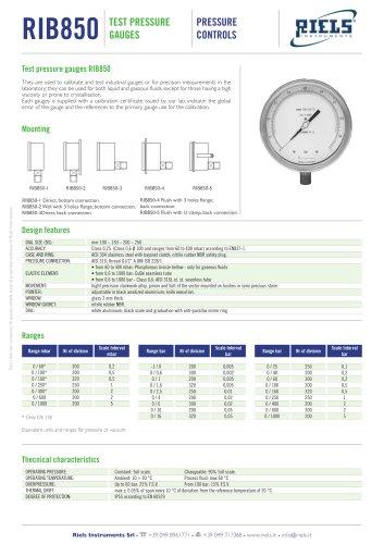 RIB850 Test pressure gauge Riels Instruments
