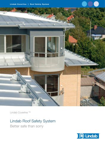 Roof safety system