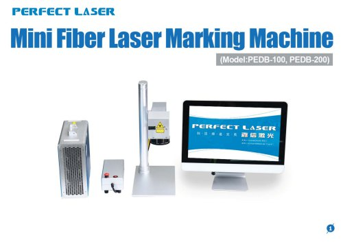 Perfect Laser-Mini Fiber Laser Marking Machine PEDB-100