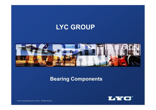 LYC Bearing Components