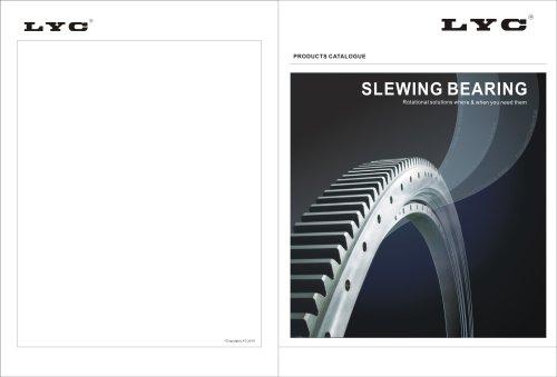 LYC Slewing Bearings