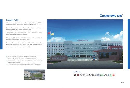 Changhong/battery