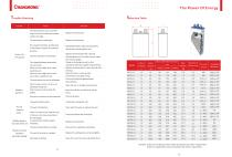 CHANGHONG  Ni-Fe cell  NF-S Series for Solar PV - 8