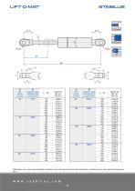 Standard program for gas springs - 10
