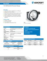1131 Differential Pressure Gauge - 1