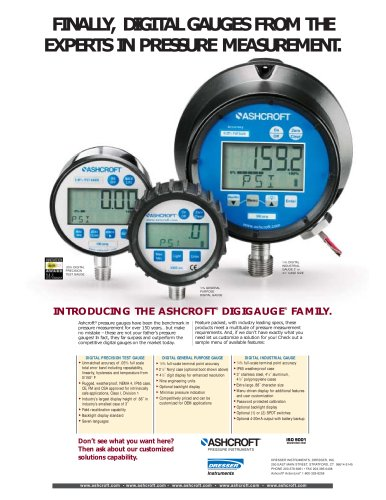 Download Digital Gauge Quick Guide