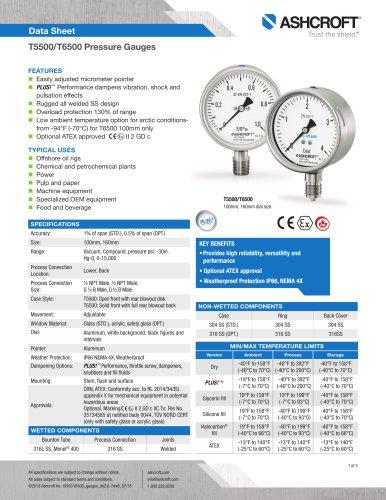 T5500 Pressure Gauge