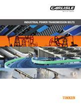 INDUSTRIAL POWER TRANSMISSION BELTS - 1