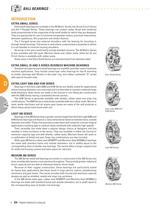Timken Ball Bearings - 7