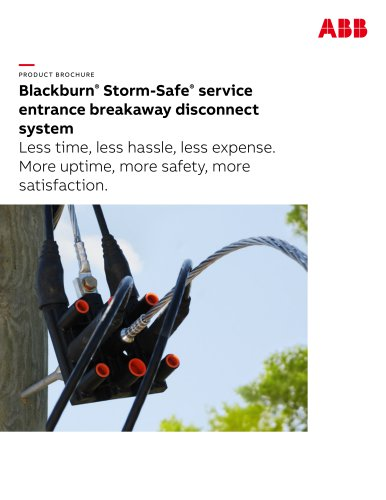 Blackburn Storm Safe