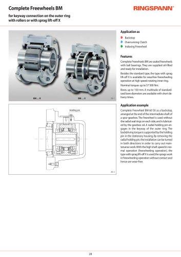 Complete Freewheels BM RINGSPANN
