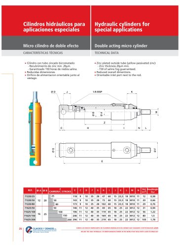 Hydraulic cylinders for special applications
