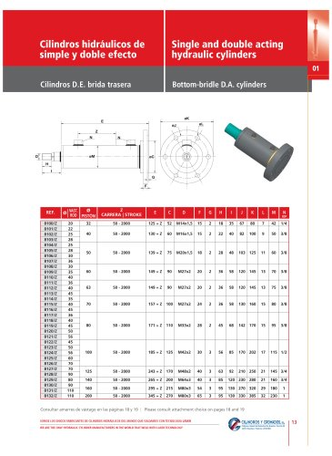 Single and double acting hydraulic cylinders Page 13