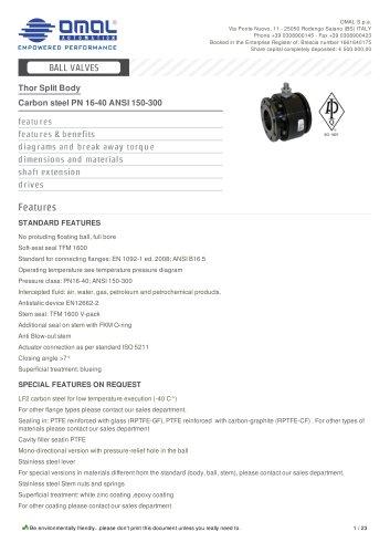 Carbon steel PN 16-40 ANSI 150-300
