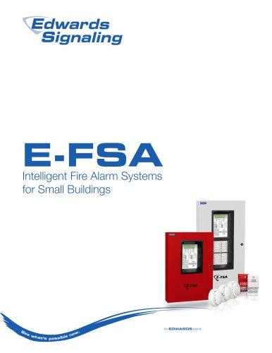 E-FSA_Brochure