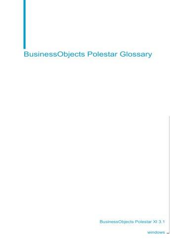 BusinessObjects Polestar Glossary