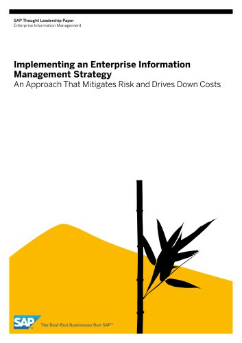 implementing-an-enterprise-information-management-strategy
