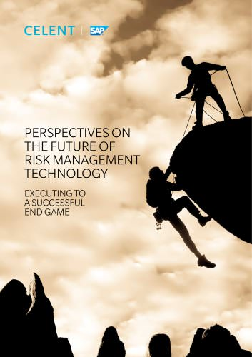 PERSPECTIVES ON THE FUTURE OF RISK MANAGEMENT TECHNOLOGY