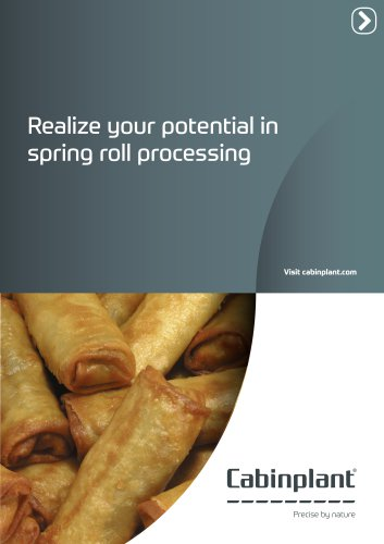 spring roll processing