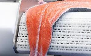 Transformação de peixe