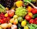 Outros equipamentos para a produção hortifrutícola