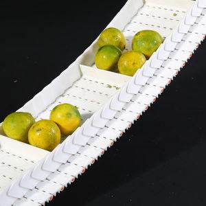 esteira transportadora modular